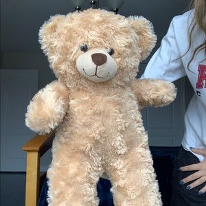 Build a bear brand new great condition teddy